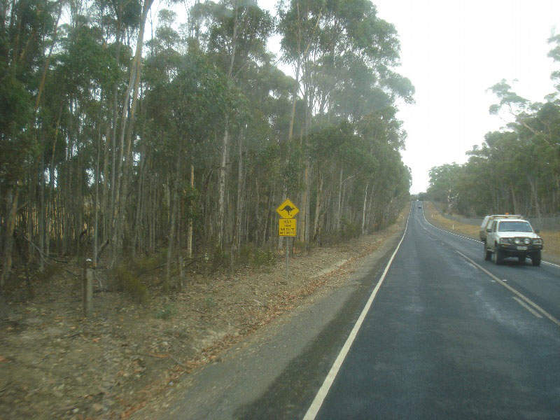 The Yan Yean Road upgrade project will remove congestion and enable smooth flow of traffic. Image courtesy of Peter Renshaw.