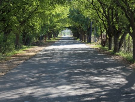 India partners with University of Birmingham to improve rural roads